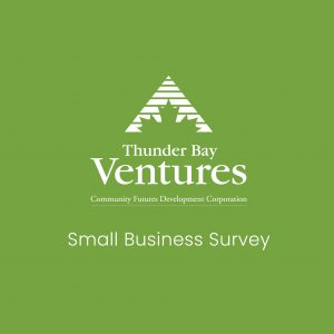Small Business Survey