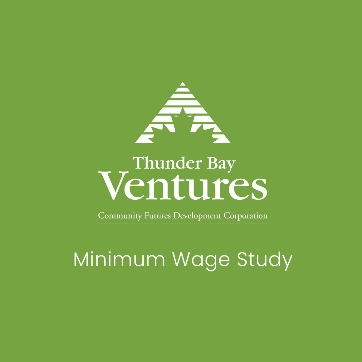 Minimum Wage Study